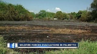 Wildfire forces evacuations in Palmetto