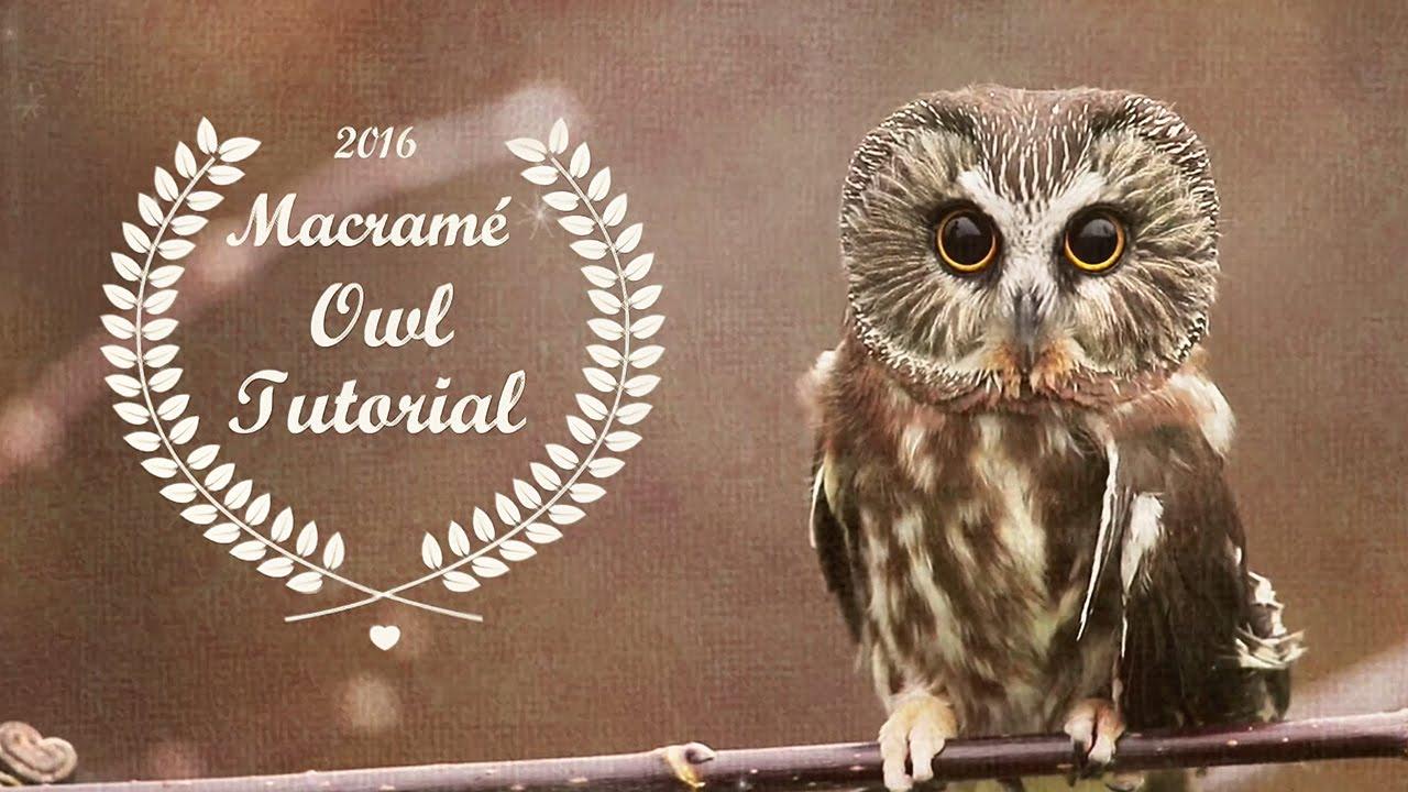 Beaded Macram 233 Owl Tutorial Youtube