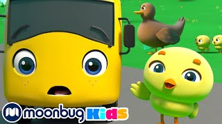 Little Ducks - Be Careful When Crossing the Road | Go Buster - Baby Cartoons | Moonbug Kids