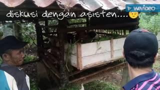 ForRest SiCor Little Farm [4]