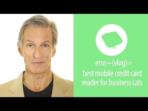 Whats The Best Mobile Credit Card Reader For Your Cats Small Business