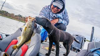 Taking The Puppy Fishing For The FIRST TIME