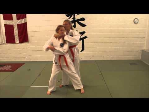 Ju-Jitsu in Randers, Horsens and Hedensted (DK)