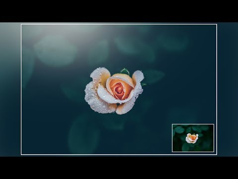 Photoshop Tutorial : How to Edit Flower Photos in Photoshop - Photo Effects Tutorial thumbnail