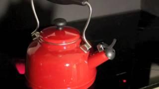 1.7 Quart, Enamel on Steel Tea Kettle video