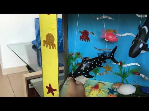 aquarium-for-kids-school-project-3d-model-shark-whale-lobster-crab-crocodile-starfish-dolphin