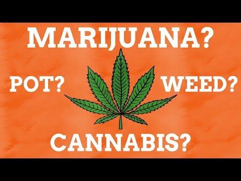 Why Does Marijuana Have So Many Names?