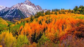 Музыка Для Души🍁Осень🍁Beautiful Autumn