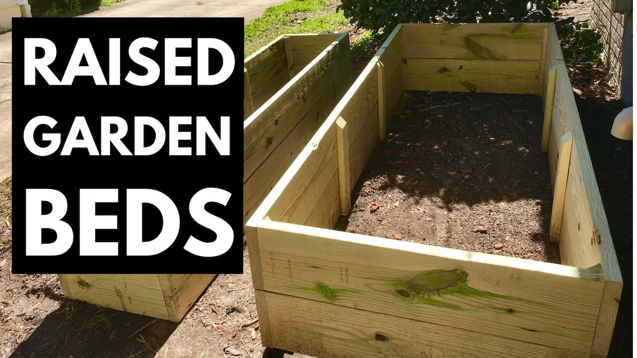Build Raised Garden Beds 19 Deep Youtube