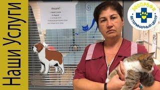 Ветеринарной  клиники ЗооПрофи Акция