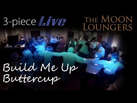The Foundations Build me up Buttercup | Live Cover Version by the Moon Loungers