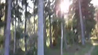 Belarus Chernobyl Zone Adventure