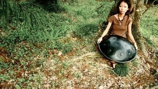 Spacedrum 13 notes (handpan) https://www.facebook.com/yukikoshimoto...