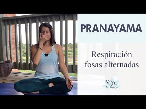 Respiración de las Fosas Alternadas - Nadi Shodhana - Pranayama - Yoga con Adriana.