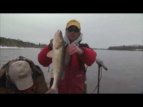 Three Way For Spring Walleye