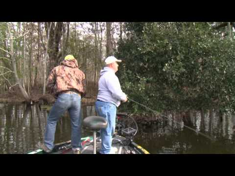 Cold Day Bass Fishing