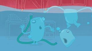 수력 및 유체 | 비오는 날 | 어린이를위한 재미있는 만화 | WildBrain
