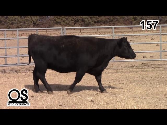 Stucky Ranch Lot 157