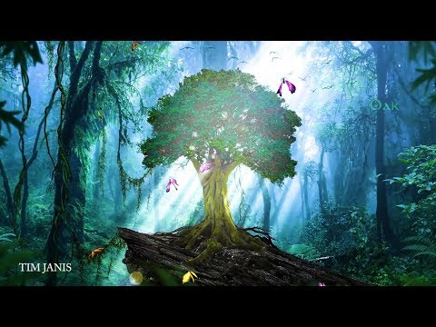 """Peaceful Relaxing Instrumetal Music, Soothing Meditation Music """"Forest Oak"""" By Tim Janis"""