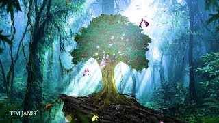 "Peaceful Relaxing Instrumetal Music, Soothing Meditation Music ""Forest Oak"" by Tim Janis"
