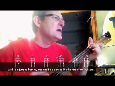 New Slang—The Shins on Ukulele - YouTube