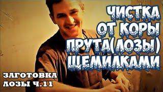 заготовка лозы ч.11 братья Коваленко