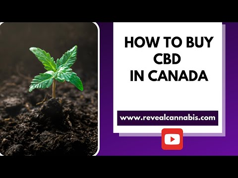 How To Buy CBD In Canada