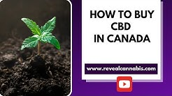 5 Tips for buying CBD in Canada