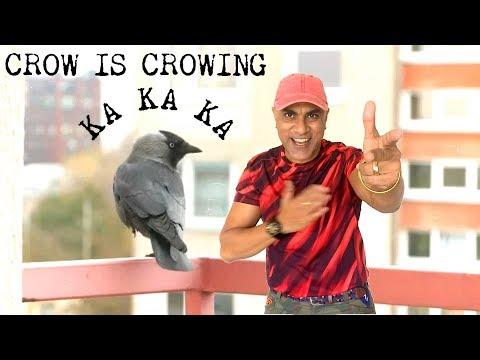 BABA SEHGAL- CROW IS CROWING KA KA KA