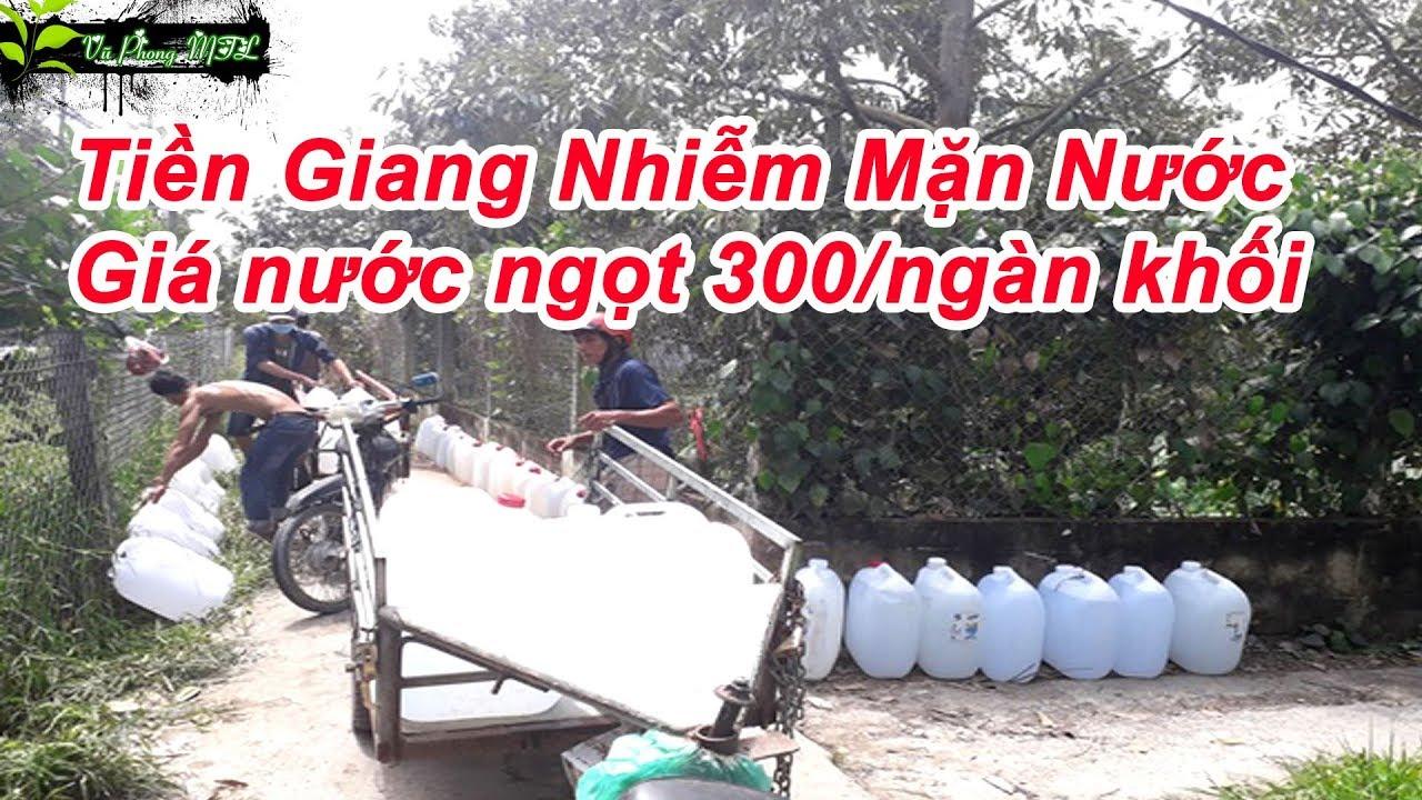 Tiền Giang Nhiễm Mặn Nước Giá nước ngọt 300 ngàn khối | 🌿 Vũ Phong MTL 🌿
