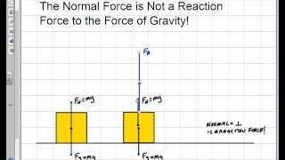Physics: The Normal Foŗce is Not a Reaction Force to Gravity!