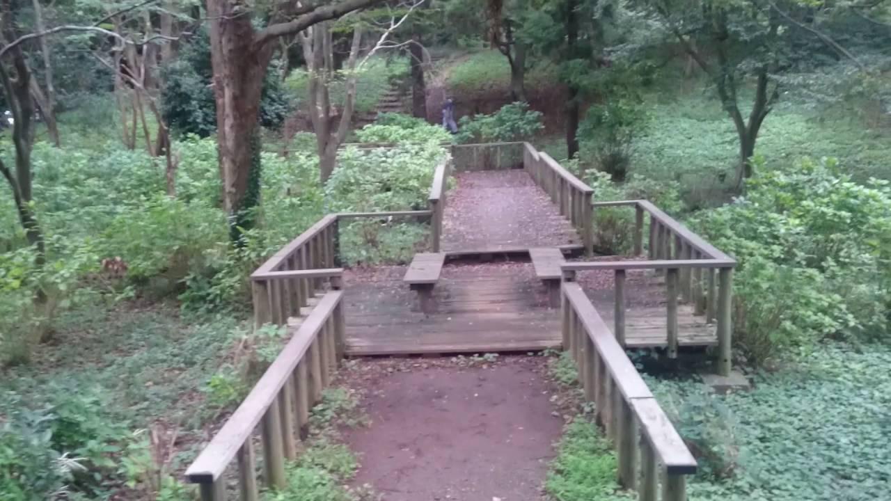 村上 緑地 公園
