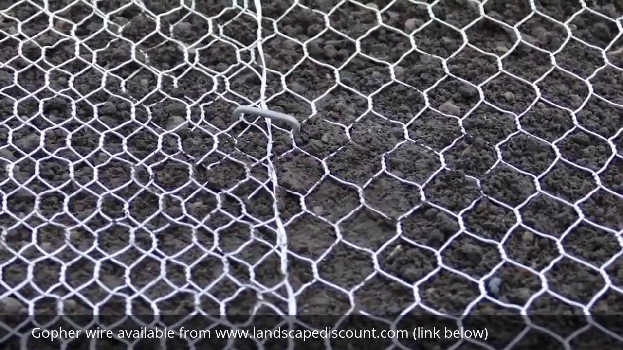 How to Install Gopher Wire Mesh - YouTube