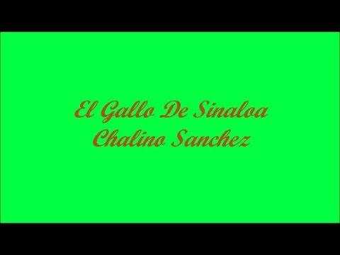 El Gallo De Sinaloa (The Rooster From Sinaloa) - Chalino Sanchez (Letra - Lyrics)