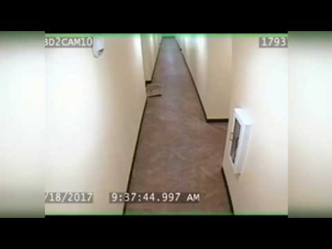 Dash cam and hallway footage of Seattle officer-involved shooting