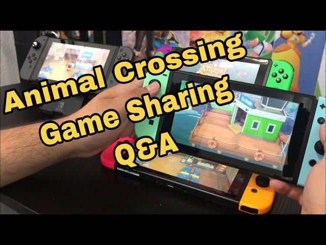 Game Sharing Animal Crossing