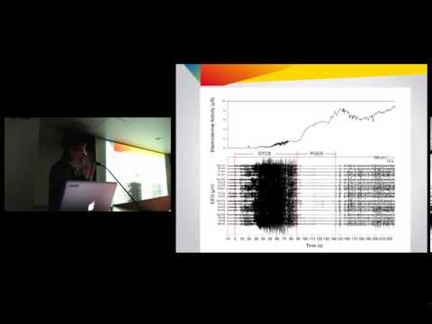 Rosalind Picard - What Does Skin Conductance Tell Us About Brain Activity?
