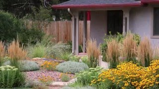 5 Landscape Mistakes to Avoid