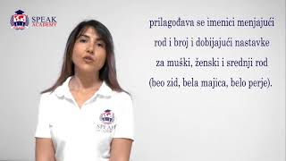 Serbian Lesson 4.3 - Male, female and middle gender - Serbian language  courses