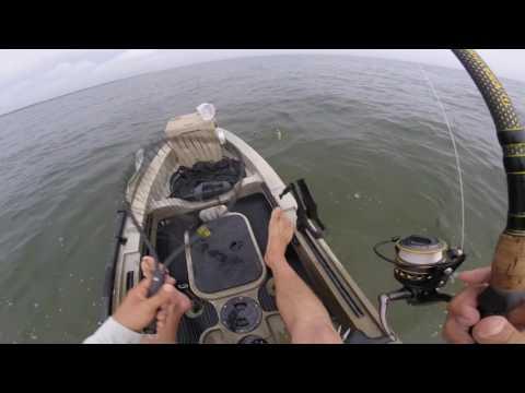 Kayak Fishing Near Gandy Bridge In Tampa Bay