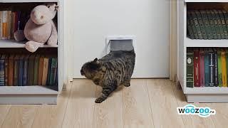 Дверь для кошки и собаки большого размера с магнитным фиксатором. Удобный лаз для кошки в двери.