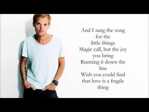 Avicii - For a Better Day (Lyrics / Letra)