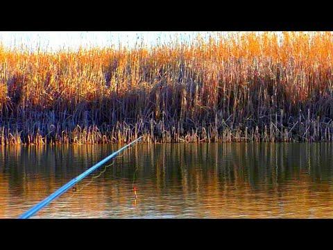 РЫБАЛКА ВЕСНОЙ 2020 рыбалка на поплавок ловля карася