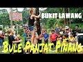 Ngakak! Bule Panjat Pinang 17 Agustus 2017 Di Bukit Lawang Mp3