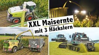 Agrolohn XXL Maisernte mit 3 Häckslern | Pistenraupe | Claas Jaguar | Krone Big X | John Deere 8000i