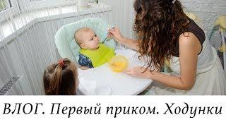Домашний ВЛОГ. Первый ПРИКОРМ. ХОДУНКИ. Дела ипотечные.