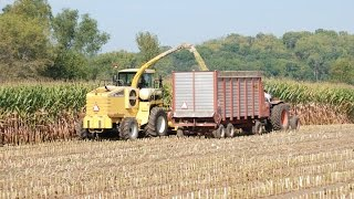 Corn Silage: Part 1 Predicting Harvest and Moisture Level