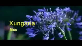 Biús   Xungaria 1