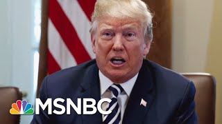 President Donald Trump Lists Payment To Michael Cohen On 2017 Financial Disclosure Report | MSNBC