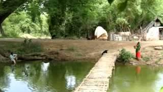 Ilayagaanam ilayaraja album naaalaiyire video song